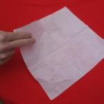 napkin_rose-start